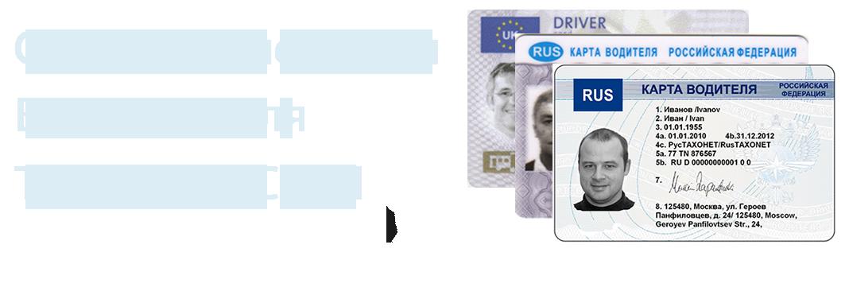 Севастополь климат экология районы экономика криминал